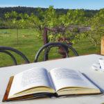 Lectura i cafè al balcó de l'Hostal Nou