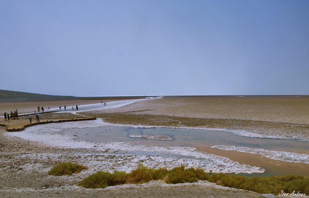 Un dels bassals d'aigua salada a Badwater Basin